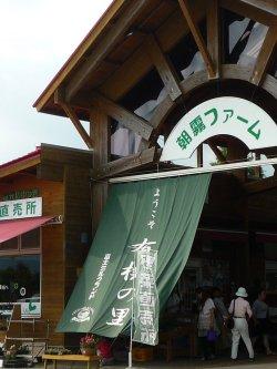 20090826_朝霧CAFE&ひまわり畑_0070.jpg